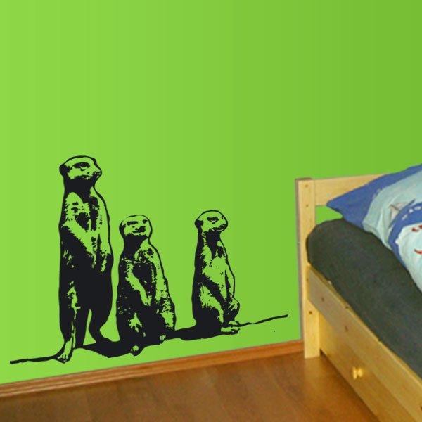Wandtattoo Tiere Erdmannchen Kinderzimmer